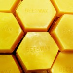beeswax small